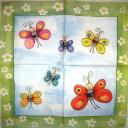 бабочки Vielseidig Verlag