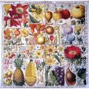 фруктово-цветочная ботаника