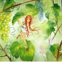 феечка на винограде
