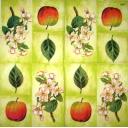 яблоки, яблоневый цвет