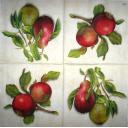 Яблоки и груши 33 х 33