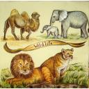 животные саванны и пустыни