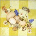 Перья, цветы и яйца