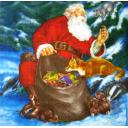 дед Мороз и зверушки