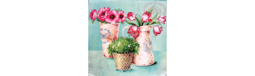 Цветы в вазонах и горшках.