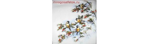 Птички зимой.