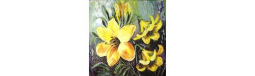 Орхидеи. Лилии